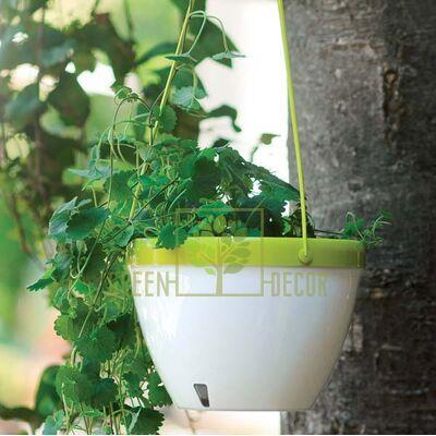 Купить  Вазон VISTA 3,8 л. подвесной белый-лайм  в интернет-магазине Green Decor.