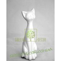 Кот белый глянец 2