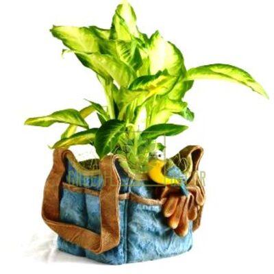 Кашпо для цветов Декоративное кашпо для цветов Сумка с птичкой - оригинальный подарок для родных и близких