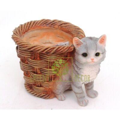 Купить  Котенок с корзинкой  в интернет-магазине Green Decor.