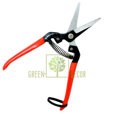 Ножницы садовые Ножницы-секатор с упорной пружиной от Китай |Green Decor