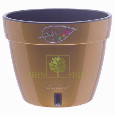 ASTI Вазон ASTI 18 л золотий-чорний від Santino |Green Decor