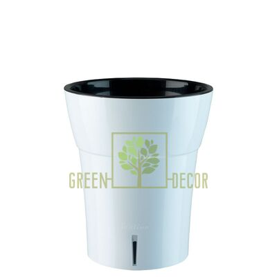 Dali-DEA Вазон для Орхидей Dali-Dea 1,25 л белый-черный от Santino  Green Decor