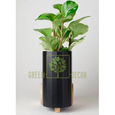 Дизайнерский горшок для цветов FROLLER черный 3,5 л