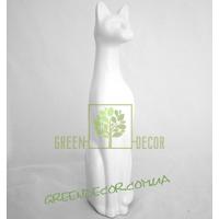 Кот белый глянец 5