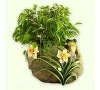Кашпо Лягушка с цветами 2