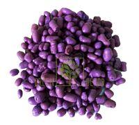 Цветной керамзит mini 3 л фиолетовый