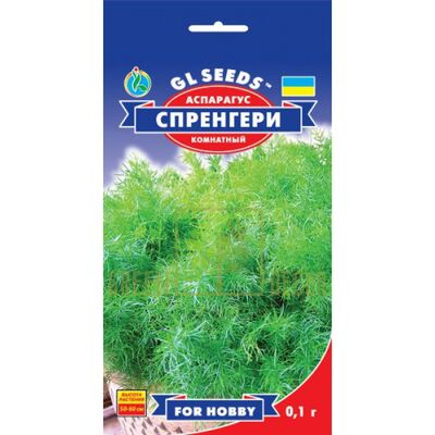 Семена Аспарагус Спренгери 50 см 0,1 г, GL Seeds