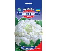 Капуста цвітна Сноу Бол F1 0,5, GL Seeds
